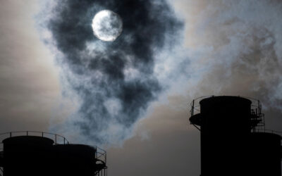 Daily global CO2 emissions 'cut to 2006 levels' during height of coronavirus crisis
